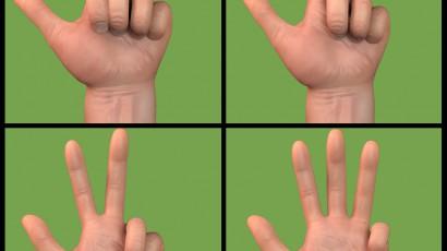 Mosaïc Hand