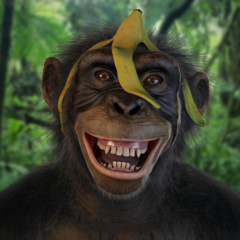 Laughing Monkey Images - Reverse Search - photo#29